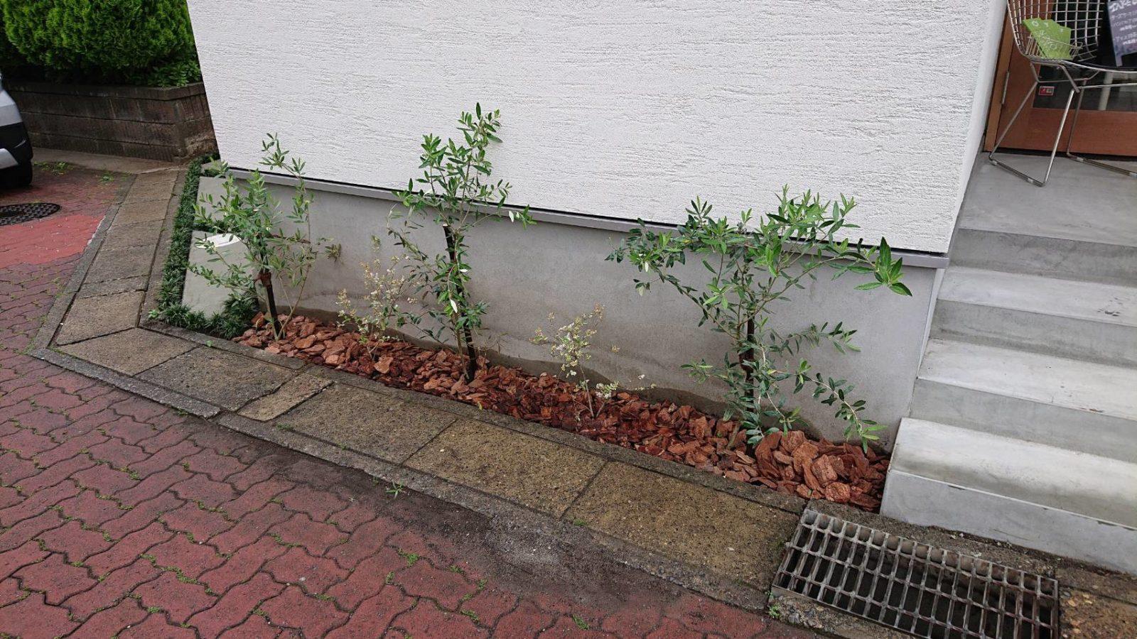 植栽植え込み